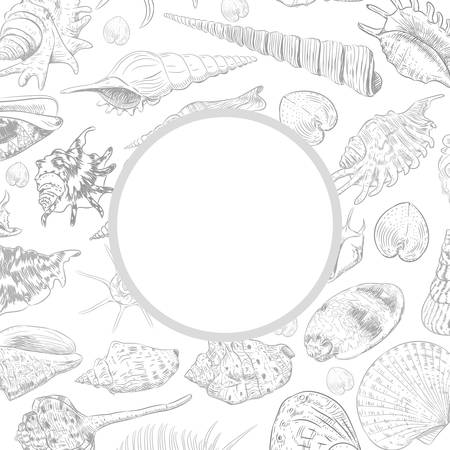 Summer concept with Unique museum collection of sea shells rare endangered species, molluscs gray contour on white background. Circle wreath card banner design with space for text. Vector illustration
