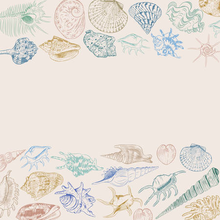 composition Summer concept with Unique museum collection of sea shells rare endangered species, molluscs Khaki blue green brown contour on beige background. card banner design. Vector illustration 向量圖像