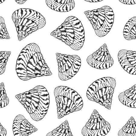 Summer concept with Unique museum sea shells sea snails. Sketch black contour isolated on white background. Can be used for fabrics, wallpapers. Vector illustration