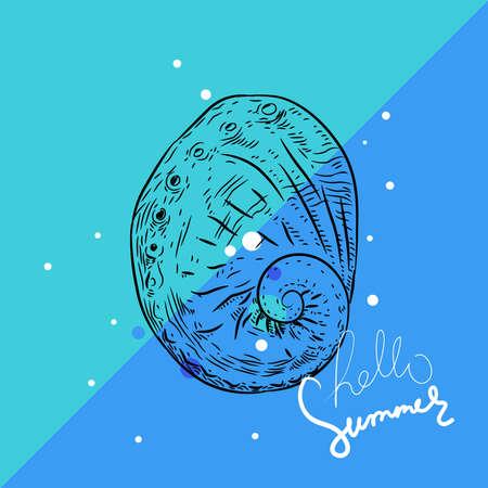 Hello summer card banner. Vetigastropoda sea snail. Unique shells, molluscs. Sketch cyan black contour on blue background. Vector illustration