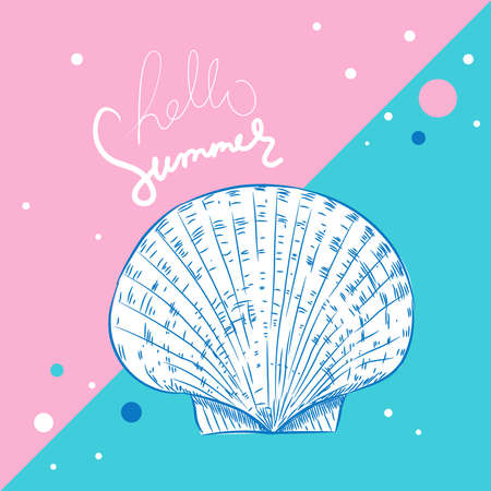 Hello summer card banner. scallop is a marine bivalve mollusc of the family Pectinidae Unique museum sea shell sea snail. Sketch contour on pink blue background. Vector illustration