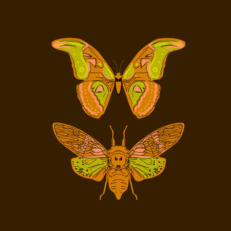 butterfly cicadas sketch, yellow orange mustard olive green contour on dark brown background. simple art. Can be used for Gift wrap, fabrics, wallpapers. Vector illustration