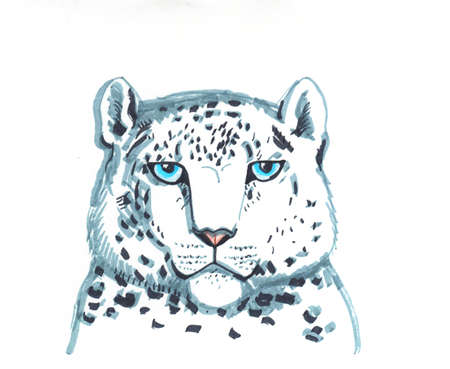 snow leopard ounce, is a large cat native to the mountain ranges of Central and South Asia ranging from eastern Afghanistan to Mongolia and western China. sketch markers, freehand drawing