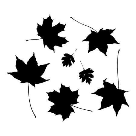 black white maple leaves silhouette collection. nature scandinavian style. decor trend of the season. Vector illustration