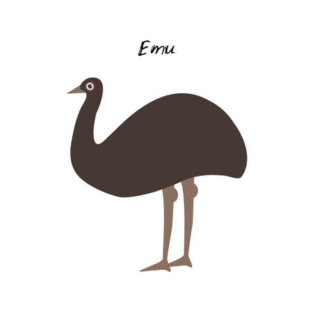 cute Kawaii Australian Emu, isolated on white background. Can be used for cards for preschool children games, learning words. Vector illustration  イラスト・ベクター素材