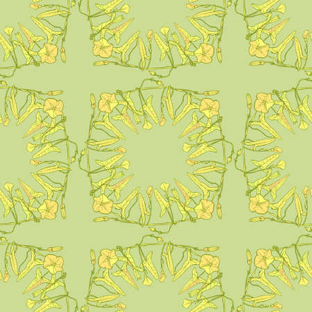 Seamless pattern branch with leaves buds and flowers bindweed floral square frame, border wreath yellow light green contours hand-drawn. Can be used for Gift wrap fabric wallpaper. Vector illustration