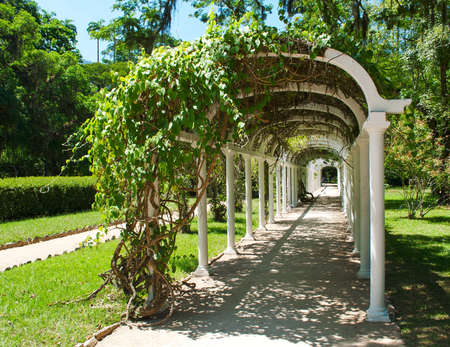 Pergola in Botanical Garden in  de Janeiro  Brazil Stock Photo - 13113108