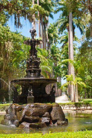 The English fountain and palm alley in Botanical garden in Rio de Janeiro  photo