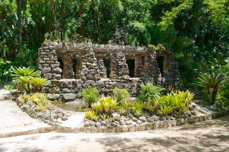 Botanical garden in Rio de Janeiro photo