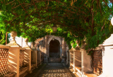 d: Pergola in park of Villa d Este in Tivoli. Italy