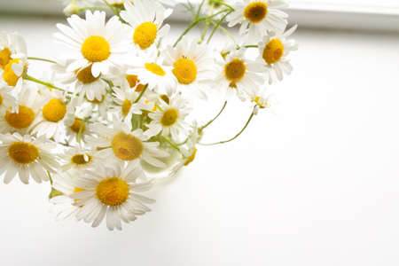 bouquet of small white flowers
