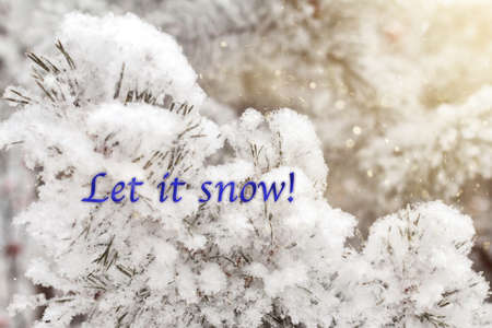 The Let it snow phrase written on bright snowy nature picture, calendar or postcard template