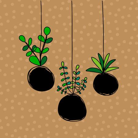Kokedama drei Pflanzen setzen handgezeichnete Illustration auf braunem Schriftkarikaturminimalismus