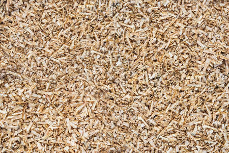 cuttings: Natural background of wood sawdust.