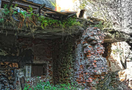 blasted: Ruins of shabby building covered by vegetation. This building is very old and not inhabited for a long time. Brick walls are blasted. Stock Photo
