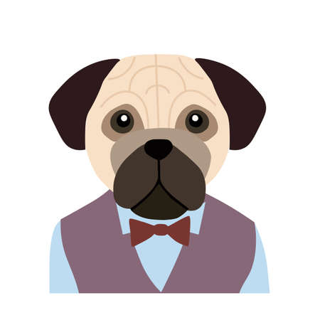 Vector portrait of dog bulldog in flat style