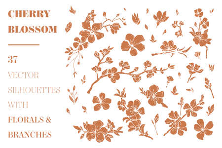Vector cherry branches and florals Ilustracja