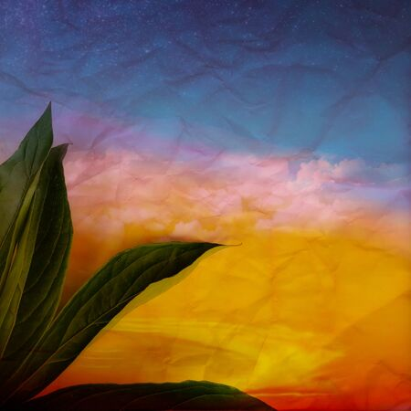 Tropical and palm leaves in vibrant bold gradient holographic colors. Concept art. Minimal surrealism. Stok Fotoğraf