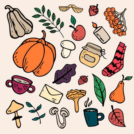 flat illustration on an autumn theme: mushrooms, vegetables, leaves, cute attributes.