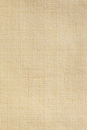 Linen canvas texture background  Stock Photo - 13056696