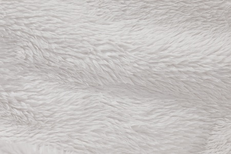Soft, fur furry white textured background photo