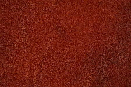Brown leather texture for background Stock Photo - 13291623