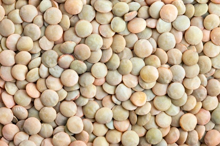 Green Lentils texture background  Lentils are rich in protein, carbohydrates, fiber, and low in fat  photo