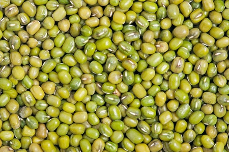 Mung Bean texture background  Also called Mungo or Mung Pea  A major player in Indian and Chinese dishes Stock Photo - 13404012