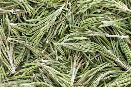 Rosemary  Rosmarinus officinalis  texture, full frame background   Used as a spice in cuisines all over the world  The plant is also used in medicine Stock Photo - 13493012