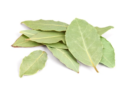 nobilis: Bay Leaves  isolated on white background  Also called bay laurel or Laurus nobilis  Used as a spice in cuisines and also in medicine   Stock Photo