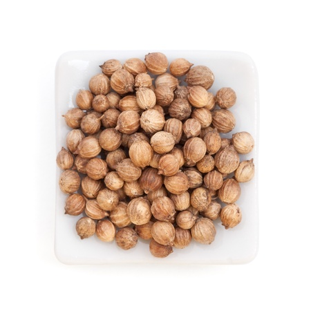 coriander: Coriander Seeds  Coriandrum sativum  in a white bowl on white background  Also called Cilantro or Dhania or Malli  Used in cooking and to give a pleasant scent in perfumery, cosmetics, soap-making  Stock Photo