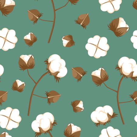 Seamless pattern with cotton flowers, bolls and branches. Vettoriali
