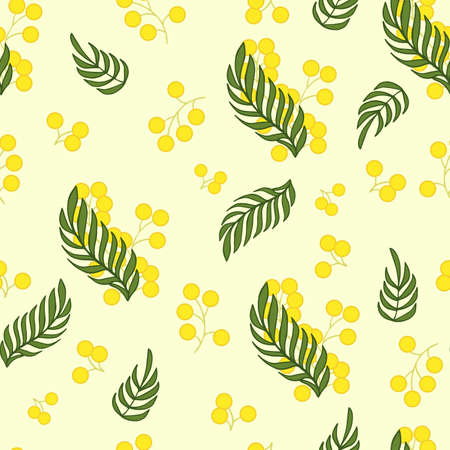 Seamless vector pattern with mimosa flower. Buds and leaves.