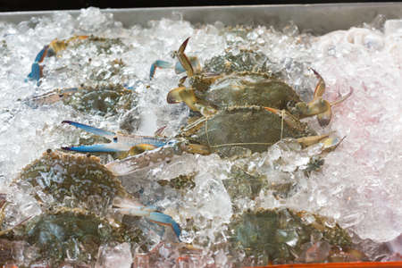 Blue crabs on ice in open buffet restaurant