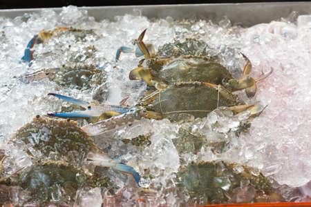 Blue crabs on ice in open buffet restaurant Imagens - 37443328