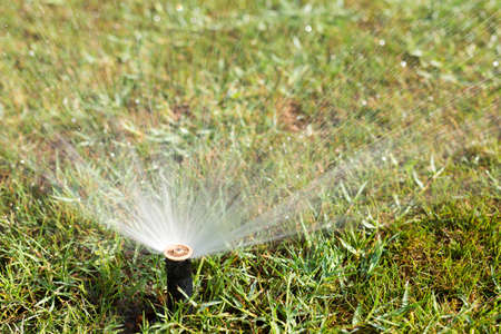 Sprinkler working on a green grass lawn