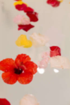 Flower petals in jacuzzi in a warm tone. Abstract blur background