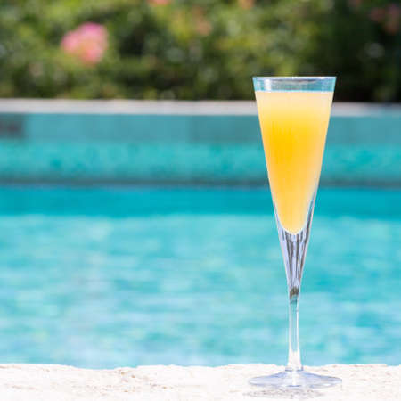 bellini: Glass of Bellini cocktail on the pool nosing at the tropical resort. Square, cocktail on right side