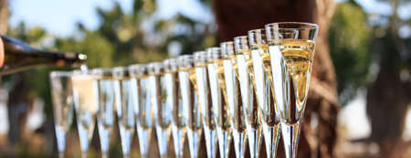 Many glasses of champagne or prosecco near resort pool in a luxury hotel. Pool party. Pouring drink into glasses. Horizontal, banner format Banco de Imagens