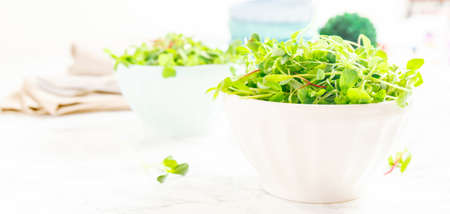 Mixed baby greens salad in bowl. Superfood snack concept. Horizontal, banner format