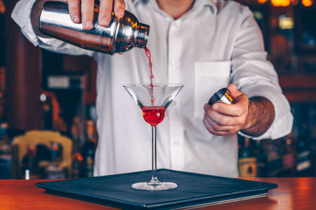 Barman pouring  cocktail at a nightclub. Nightlife and entertainment concept. Horizontal Reklamní fotografie