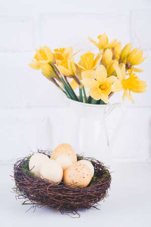 Jar with narcissuses and eggs at the white brick background. Spring and Easter concept. Vertical Standard-Bild - 120552884