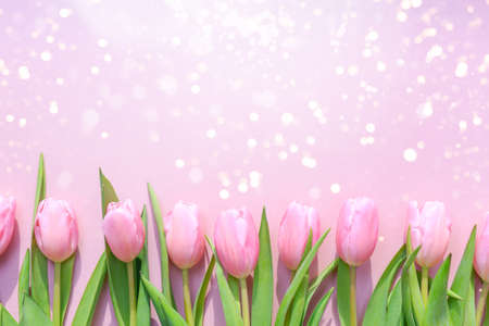 Pink tulips on the pink background with festive lights bokeh. Flat lay, top view.  Valentines, spring  and Mother day background. Horizontal Standard-Bild - 122380321