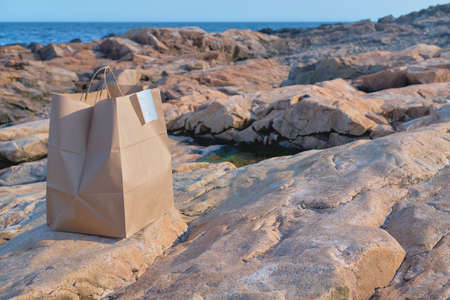 Takeaway food craft bag at the isolated rocky ocean beach. Food delivery and takeaway, recyclable container, lonely lunch concept