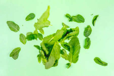 Mint leaves falling to the trendy solid green backdrop, ecology and messthetics concept, copy space