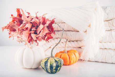 Fallen leaves in a vase with pile of white knitted woolen clothes and assorted pumpkins. Autumn, fall, beautiful nature , cozy home concept