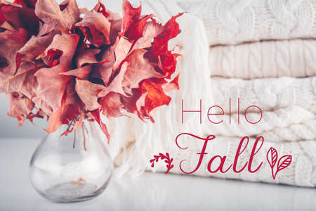 Fallen leaves in a vase with pile of white knitted woolen clothes with Hello Fall wording. Autumn, fall, beautiful nature , cozy home concept. Close up