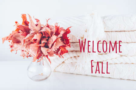 Fallen leaves in a vase with pile of white knitted woolen clothes with Welcome Fall wording. Autumn, fall, beautiful nature , cozy home concept