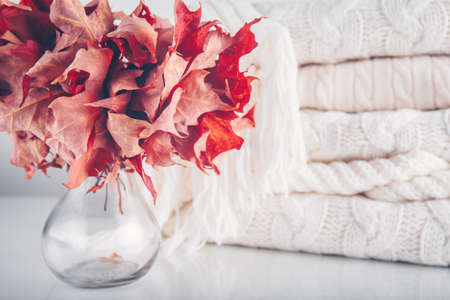 Fallen leaves in a vase with pile of white knitted woolen clothes. Autumn, fall, beautiful nature , cozy home concept. Close up Standard-Bild