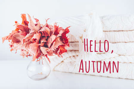 Fallen leaves in a vase with pile of white knitted Hello Autumn wording. Autumn, fall, beautiful nature , cozy home concept Standard-Bild